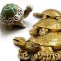 Nhà đẹp - Rùa phong thủy đón mừng trường thọ