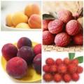 Bếp Eva - Mẹo chọn hoa quả cho Tết Đoan Ngọ