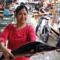 Mua sắm - Giá cả - Nghi án tồn dư chất tăng trọng trong cá tầm lậu