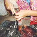 Tin tức - Vô vàn cách bơm nước vào thịt, rau ăn gian khối lượng