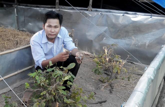 chang trai ngheo bo hoc thanh ong chu kiem 500 trieu/nam - 2