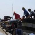 Mua sắm - Giá cả - Cá ngừ Việt Nam: Sản lượng cao, đẳng cấp thấp