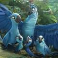 Xem & Đọc - Cuộc di trú thú vị của gia đình vẹt xanh trong RiO 2