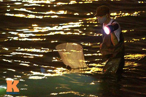 HN: Săn cá kìm kiếm gần chục triệu mỗi tháng-2