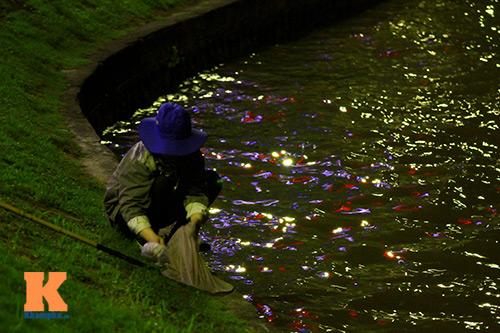 HN: Săn cá kìm kiếm gần chục triệu mỗi tháng-10
