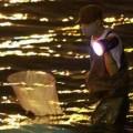 Tin tức - HN: Săn cá kìm kiếm gần chục triệu mỗi tháng
