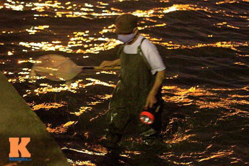 HN: Săn cá kìm kiếm gần chục triệu mỗi tháng-9