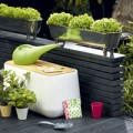 Nhà đẹp - 5 giải pháp trồng rau sạch cho nhà chật