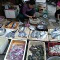 Mua sắm - Giá cả - Mực da bong, râu rụng giá 10.000 đồng/lạng ở Hà Nội