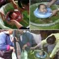 Cận cảnh lớp học bơi cho trẻ sơ sinh