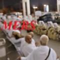 Tin tức - Báo động nguy cơ tử vong cao do MERS