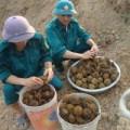 Tin tức - Quảng Bình: Nghịch bom bi, hai cháu bé tử vong