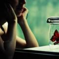 Eva Yêu - Một ngày nào đó em bất chợt quên anh