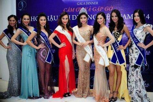 Hoa hậu Đại dương phủ nhận nghi án mua giải - 13