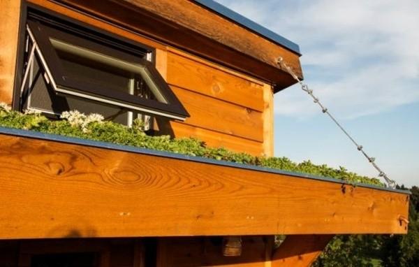 Cận cảnh nhà 30m2 có vườn riêng-2