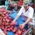 Mua sắm - Giá cả - Trái cây dội chợ, rớt giá hàng loạt