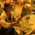 Tin tức - Chợ sen sớm ở Hà thành