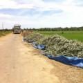 Mua sắm - Giá cả - Khóc ròng với dưa hấu 2.000 đồng/kg