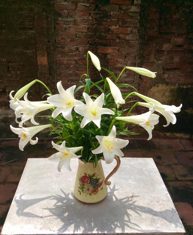 Chị Huong Nguyen gây ấn tượng với những bông hoa đẹp, cùng bình hoa điểm tô thêm sắc màu.