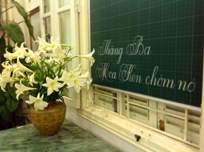 Bình hoa loa kèn e ấp bên bảng đen của chị Lý (Hà Nội)