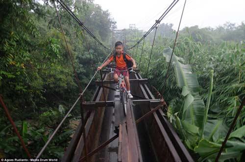 Trẻ em Indonesia đến trường trên cây cầu tử thần-3