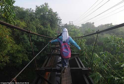 Trẻ em Indonesia đến trường trên cây cầu tử thần-8