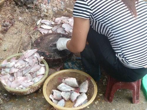 Cá ươn, cá thối tại chợ đầu mối hút khách vì giá rẻ-2