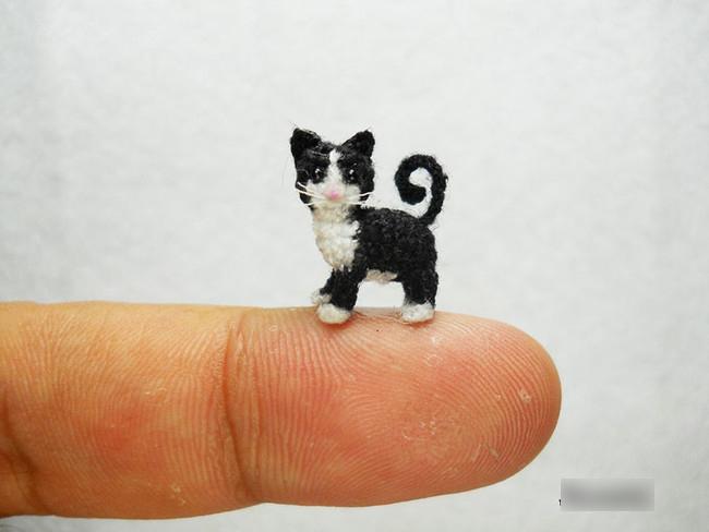 Chúng được móc bằng kim móc0,4 mm, nhỏ nhất trong các cỡ que bình thường.