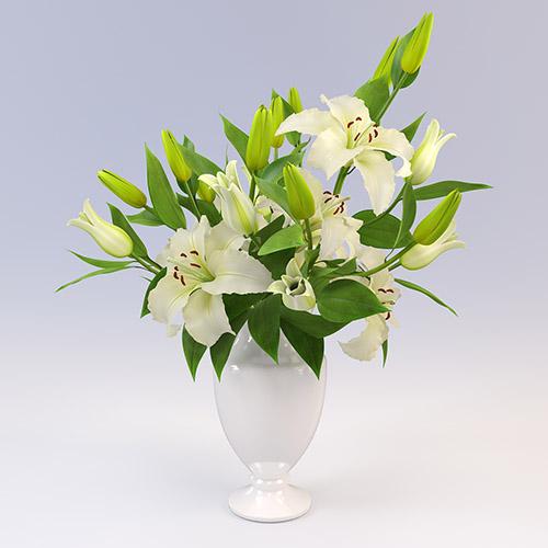 6 loai hoa dep thich hop trong ngay he - 4