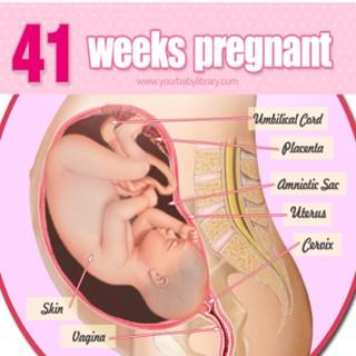 Thai nhi 41 tuần