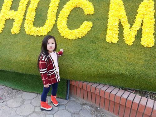 dang nguyen lan chi - ad11227 - toc may ma hong - 1