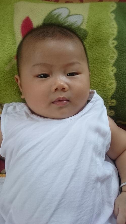 nguyen ho phuc trong - ad38334 - kubin bu bam dang yeu - 6