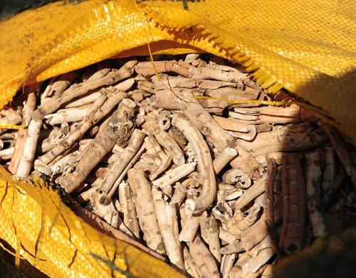 Thu giữ nửa tấn thuốc Đông y xuất xứ Trung Quốc-4