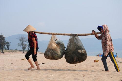 ngu dan ha tinh khon cung sau tham hoa ca chet hang loat - 3