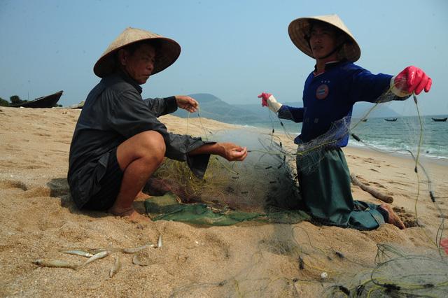 ngu dan ha tinh khon cung sau tham hoa ca chet hang loat - 6