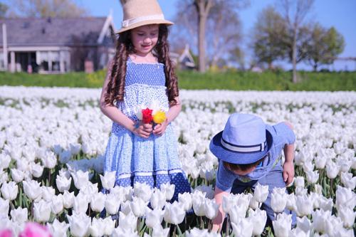 Hai thiên thần lai gốc Việt bên cánh đồng hoa Tulip đẹp như tranh-10
