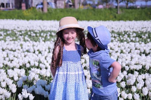 Hai thiên thần lai gốc Việt bên cánh đồng hoa Tulip đẹp như tranh-4