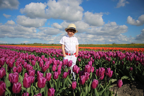 Hai thiên thần lai gốc Việt bên cánh đồng hoa Tulip đẹp như tranh-15