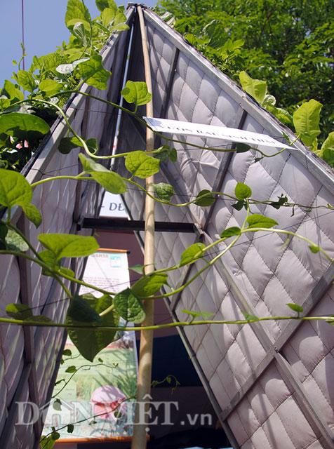 Mê mẩn vườn treo rau sạch thông minh dành cho nhà chật-9