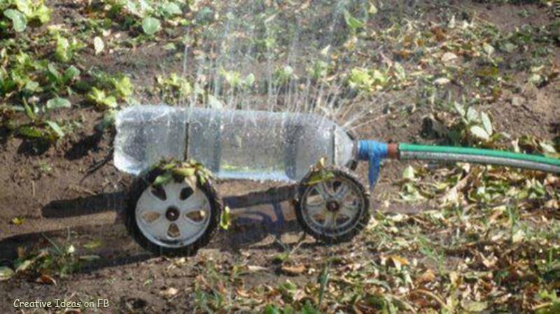 """Chai nhựa - """"trợ thủ đắc lực"""" bất ngờ trong vườn-9"""