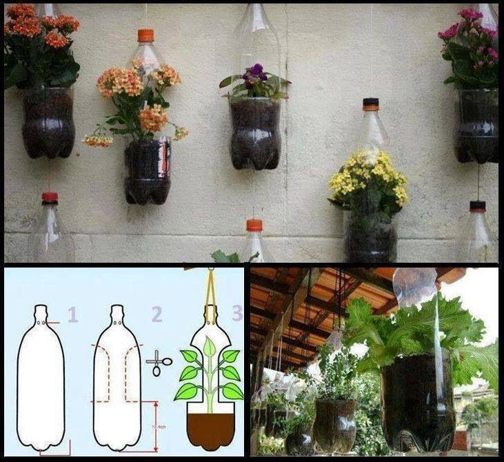 """Chai nhựa - """"trợ thủ đắc lực"""" bất ngờ trong vườn-10"""
