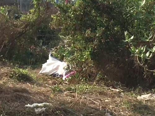 Người thân của phụ nữ bị giết rồi phi tang lên tiếng-1