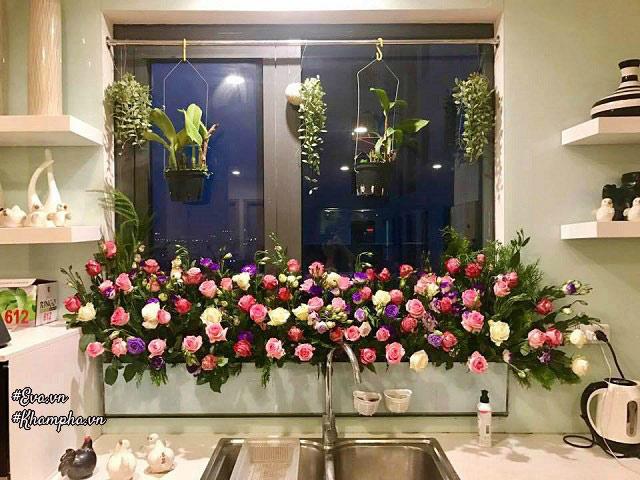 Vườn hồng đẹp mê hồn trên cửa sổ nhà bếp của mẹ Hà Thành 20 năm đi chợ săn hoa