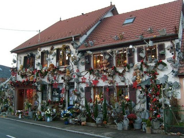 Ngẩn ngơ tiệm hoa độc nhất thế giới: bình tưới nhiều hơn hoa, bán hoa không bán bình