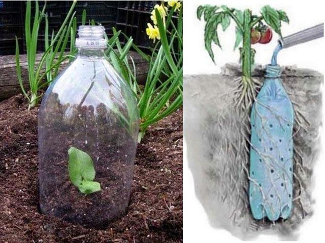 Chai nhựa bỏ đi mà có đủ loại công dụng thần kì thế này trong vườn