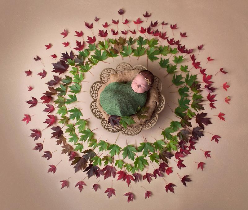 Các em bé sơ sinh cuộn tròn trong ổ thật đáng yêu biết bao.