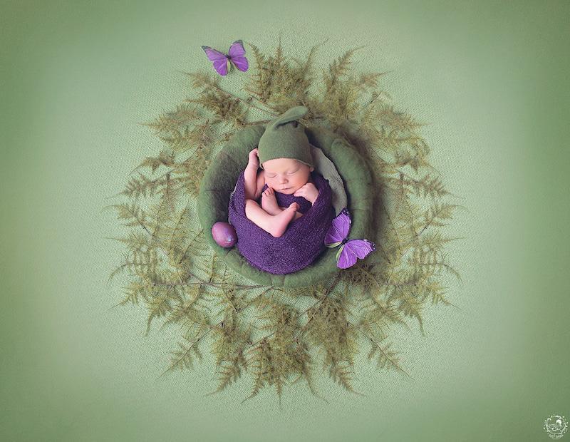Vì thế, để trẻ sơ sinh nằm trong ổ và chụp ảnh là cách làm hay nhất.