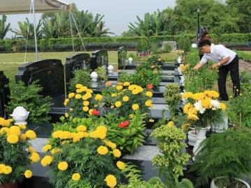Tiết Thanh Minh đi tảo mộ nên chọn loại hoa nào để không phạm cấm kị?