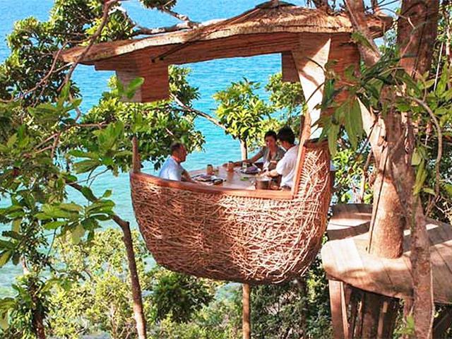 Không thể rời mắt trước nhà hàng trên cây độc đáo như ở xứ sở thần tiên