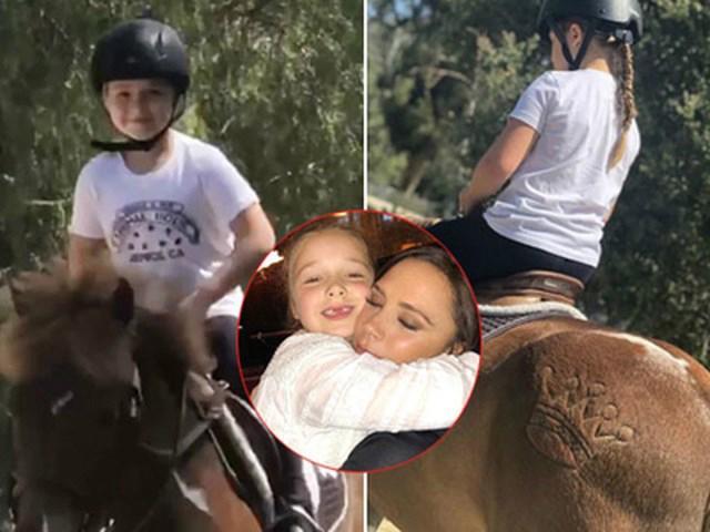 Đăng ảnh Harper vui vẻ cưỡi ngựa, Victoria tự dưng bị ném đá hội đồng